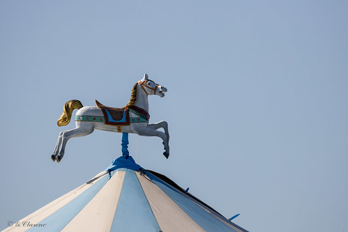 Un cheval sur le toit