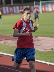 Tommaso Cerrani