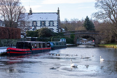 Photo of Union Canal