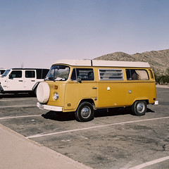 Bisby the Microbus