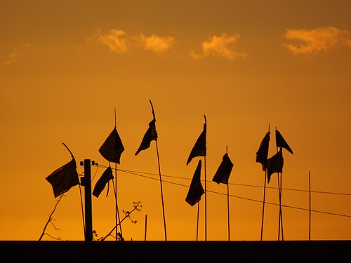Homemade Flags at Sunset