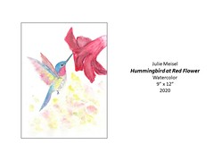 """Hummingbird at Red Flower • <a style=""""font-size:0.8em;"""" href=""""http://www.flickr.com/photos/124378531@N04/51208966753/"""" target=""""_blank"""">View on Flickr</a>"""