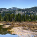 Reflections, Beavers, and Walking Trails