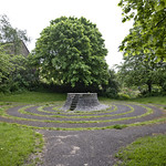 mystic grove