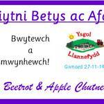 Llannefydd1
