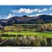 Pohangina Valley Farmland