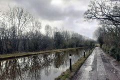 Hello! It's the Macclesfield Canal!