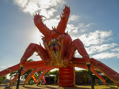 Lobster - Front On View