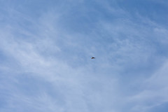 A-IMG_1651