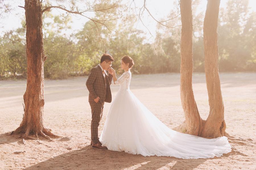 51233079091 43e0875879 o [自助婚紗] M&J/HERMOSA婚紗