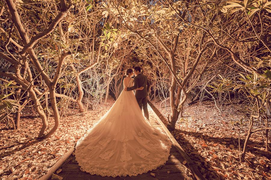 51233854624 b609f461e8 o [自助婚紗] M&J/HERMOSA婚紗