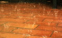Still rain