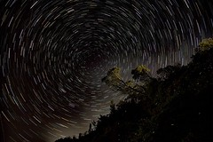 """Lucciole e stelle <a style=""""margin-left:10px; font-size:0.8em;"""" href=""""http://www.flickr.com/photos/28350447@N06/51235831947/"""" target=""""_blank"""">@flickr</a>"""