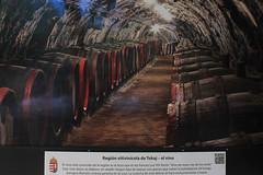 MX MR HUNGRÍA: TESOROS EN EL CORAZÓN DE EUROPA