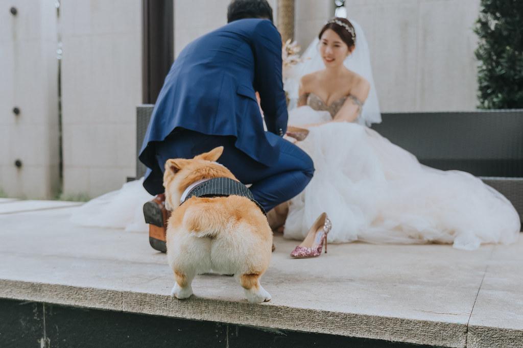 51237682858_9d5cfb31e7_b- 婚攝, 婚禮攝影, 婚紗包套, 婚禮紀錄, 親子寫真, 美式婚紗攝影, 自助婚紗, 小資婚紗, 婚攝推薦, 家庭寫真, 孕婦寫真, 顏氏牧場婚攝, 林酒店婚攝, 萊特薇庭婚攝, 婚攝推薦, 婚紗婚攝, 婚紗攝影, 婚禮攝影推薦, 自助婚紗