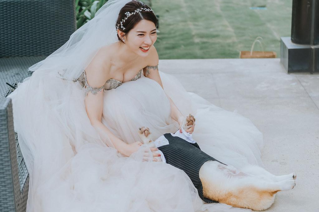 51237683273_f96448c584_b- 婚攝, 婚禮攝影, 婚紗包套, 婚禮紀錄, 親子寫真, 美式婚紗攝影, 自助婚紗, 小資婚紗, 婚攝推薦, 家庭寫真, 孕婦寫真, 顏氏牧場婚攝, 林酒店婚攝, 萊特薇庭婚攝, 婚攝推薦, 婚紗婚攝, 婚紗攝影, 婚禮攝影推薦, 自助婚紗