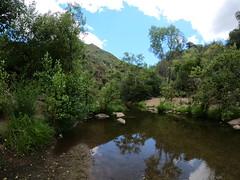 Arroyo Seco Pool
