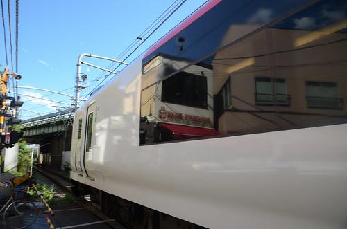 Another Narita Express E259 Series Train at Umaya-michi Crossing in 2019 June: 7