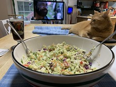 2021 161/365 6/10/2021 THURSDAY - Salad, STEVE!, Ayinger Celebrator Doppelbock, and Westworld
