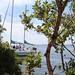 Boat floating on Biscayne Bay