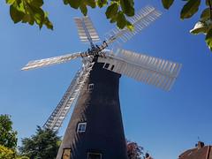 Holgate Windmill, May 2021 - 1
