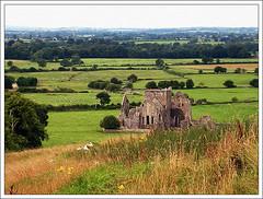 Abadia de Hore, Irlanda
