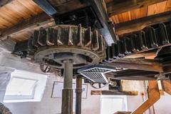 Holgate Windmill stone floor, June 2021 - 5