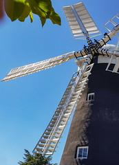 Holgate Windmill, May 2021 - 2