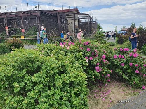 Зоопарк 12 місяців в Димері біля Київа  Ukraine Internetri 059