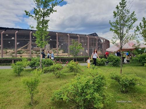 Зоопарк 12 місяців в Димері біля Київа  Ukraine Internetri 063