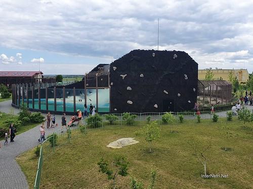 Зоопарк 12 місяців в Димері біля Київа  Ukraine Internetri 034