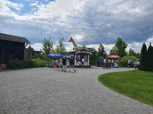 Зоопарк 12 місяців в Димері біля Київа  Ukraine Internetri 005