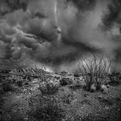 Storm, Ocotillos and Christmas Mountains