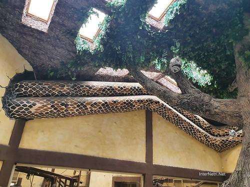 Зоопарк 12 місяців в Димері біля Київа  Ukraine Internetri 094