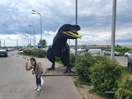 Зоопарк 12 місяців в Димері біля Київа  Ukraine Internetri 002