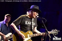 2021 Bosuil-Neil Young Mirror Band 12
