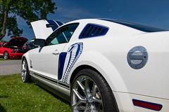 20210604 Ford Nationals at Carlisle 0228 1923