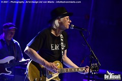2021 Bosuil-Neil Young Mirror Band 37