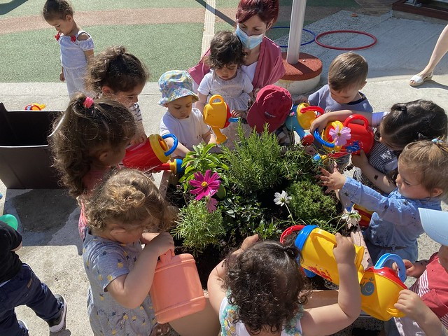 Photo 9 - Activités jardinage au multi-accueil