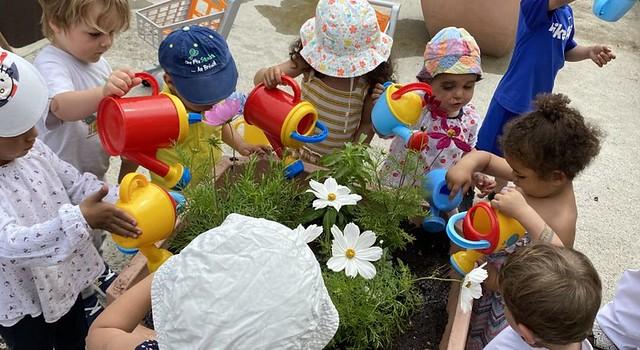 Photo 1 - Activités jardinage au multi-accueil