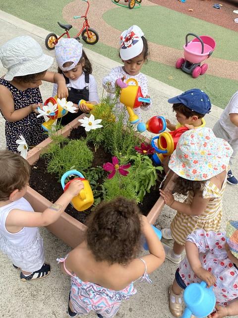 Photo 8 - Activités jardinage au multi-accueil