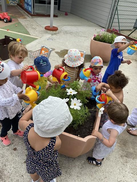 Photo 4 - Activités jardinage au multi-accueil