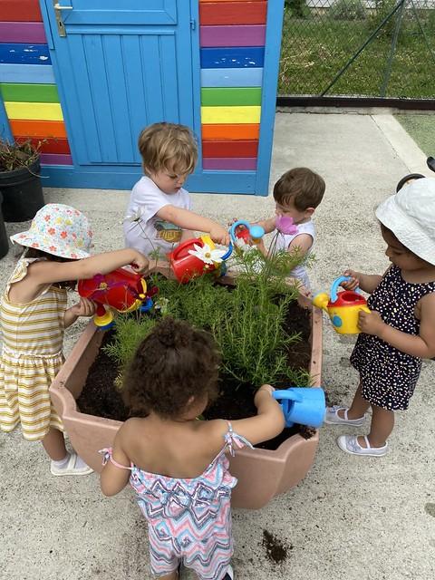 Photo 5 - Activités jardinage au multi-accueil