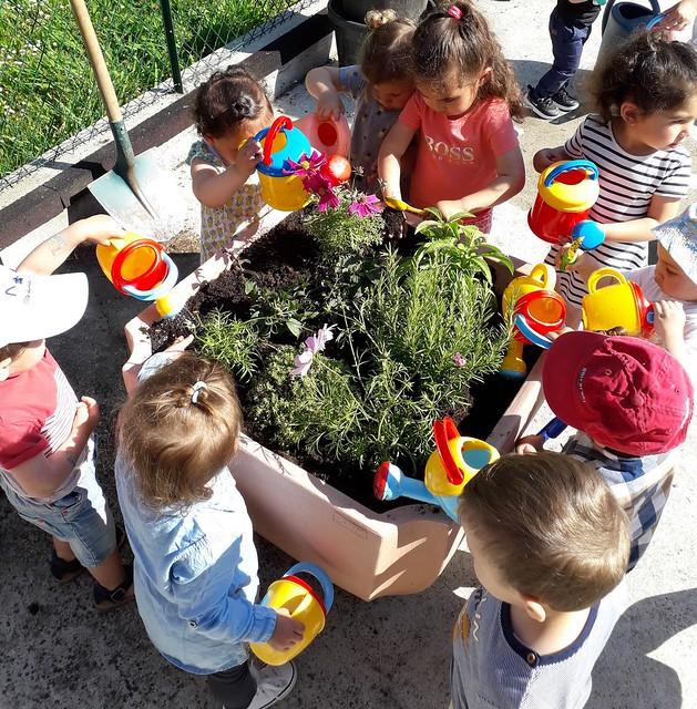 Photo 3 - Activités jardinage au multi-accueil