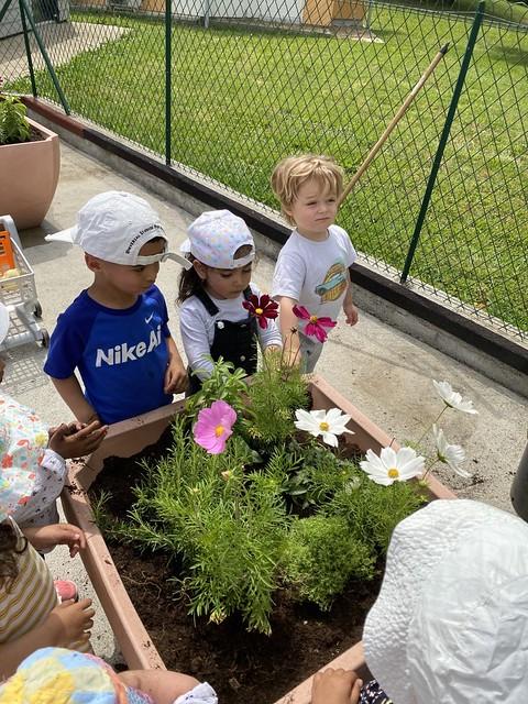 jardinage-6Photo 6 - Activités jardinage au multi-accueil