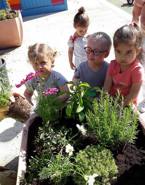 Photo 7 - Activités jardinage au multi-accueil