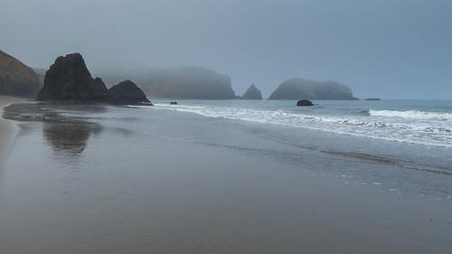 Foggy Morning at the Beach - 1