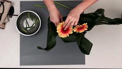 16-08-21 BJA Ikebana Digital Workshop - Capture d'écran 2021-06-16 à 17.21.51