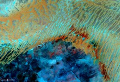 Desert Landscape of Algeria