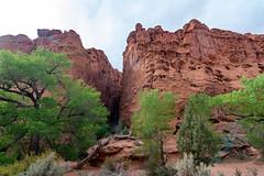 The Burr Trail